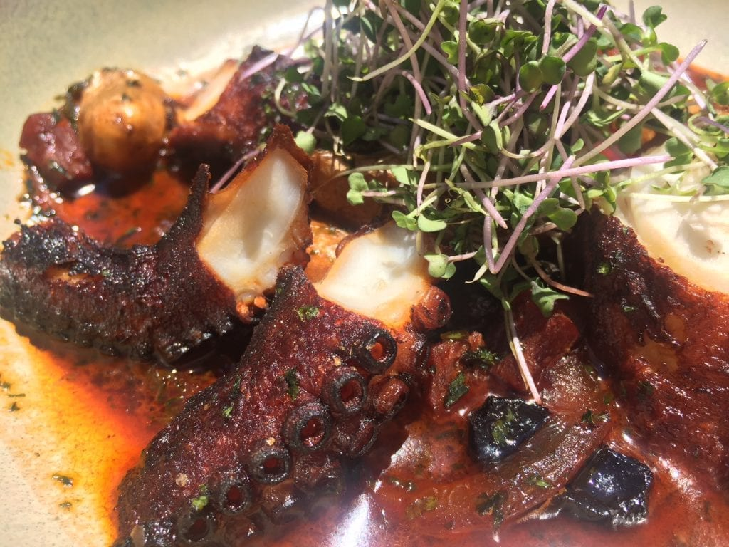 Seafood Restaurants Martha's Vineyard: 19 Raw Oyster Bar Restaurant Charred Octopus