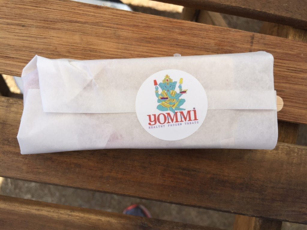 Martha's Vineyard Yommi Healthy Frozen Treats: Mint Chocochip, coconut milk, local honey, MV Sea Salt, local spinach and mint, raw cacao nibs, and peppermint oil