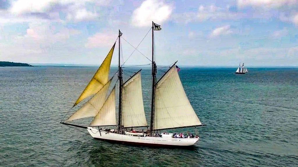 The Black Dog Tall Ships Martha's Vineyard Bucket List Adventure