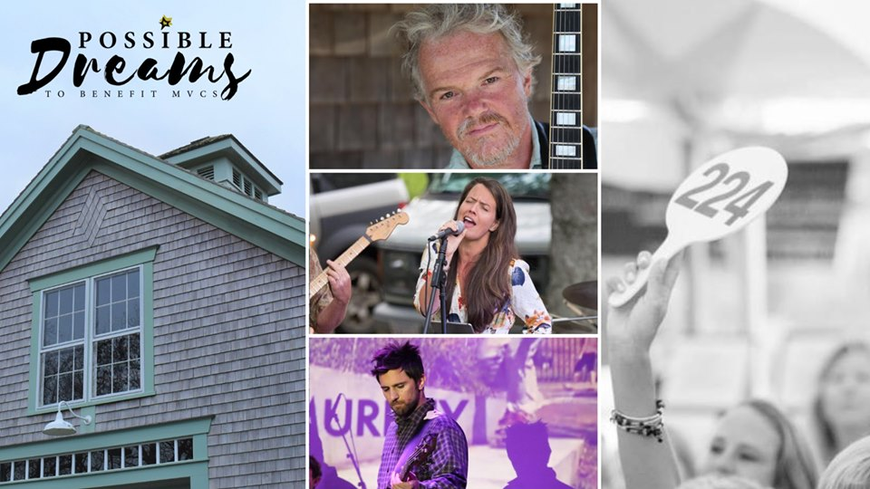 Possible Dreams Auction Martha's Vineyard Community Services Summer 2019