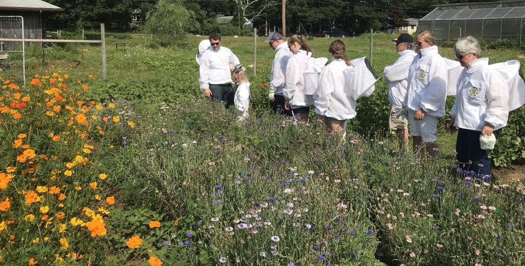 Marthas Vineyard Ginny Bee Honey Farms Oak Bluffs