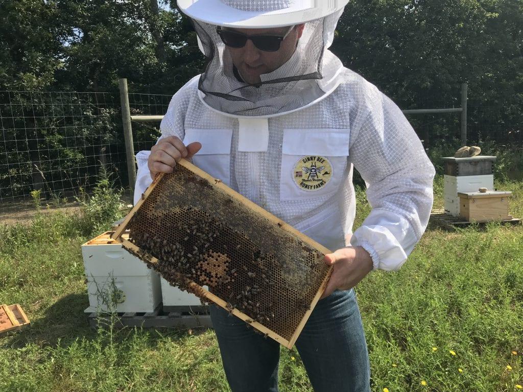 Ginny Bee Honey Farms Marthas Vineyard Oak Bluffs