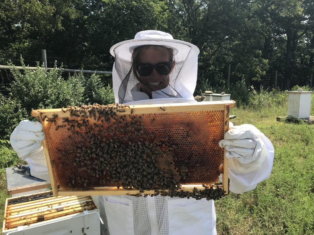 Ginny Bee Honey Farms Martha's Vineyard Oak Bluffs Beekeeping
