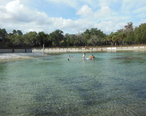 The_swimming_area_at_Lithia_Springs_Park__Florida_January_4__2015.jpg