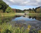 F.R._Newman_Arboretum__Cornell_University.jpg