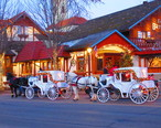 Frankenmuth_horse_and_carriage.jpg