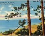 A_glimpse_through_the_pines_on_Lake_Wah-ba-ka-netta__Michigan__66505_.jpg