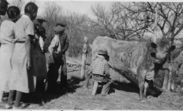 Students_at_Brave_Heart_Day__Porcupine__SD__School_learn_to_milk_a_cow_-_NARA_-_285483.jpg