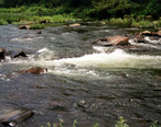Cossatot_River_Arkansas.jpg