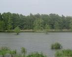 Lake_St._Joseph_in_Newellton__LA__2013__IMG_7476_2.jpg