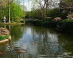 FW_Japanese_Gardens_2__5569039869_.jpg