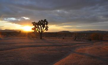 Sundown_at_Eastland_Ranch.JPG