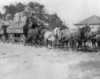 Six_horse_team_hauling_hay_at_Talbert__now_Fountain_Valley_.jpg
