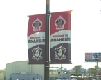 Anaheim-streetbanners-ducksangels.JPG