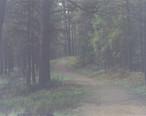 Jogging_07-03-2008_11_07_19PM.JPG