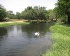 Hamilton_Creek_Park_in_Burnet__TX_IMG_2001.JPG