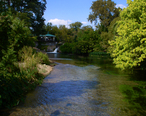 08-10-26_-_San_Marcos_River__San_Marcos__TX__USA_-_downstream_from_the_headwaters.jpg