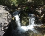 Ramsey_Canyon_-_Sierra_Vista_-_AZ_-_2015-10-01at13-09-248__22241573842_.jpg