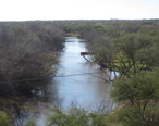 At_higher_level__the_Nueces_River_in_Cotulla__TX_IMG_2475.JPG