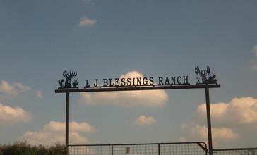 L.J._Blessings_Ranch_near_Freer__TX_IMG_0970.JPG