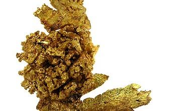 Gold-37918.jpg