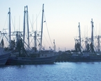 Harbor_Palacios_Texas.jpg