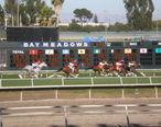 Race_9_at_Bay_Meadows_2008-08-10_5.JPG