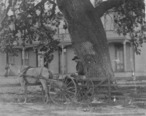 Conejo_hotel_timberville_newbury_park_1880s.jpg