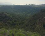 La-Branca-Barranca-Newbury-Park-Arroyo-Conejo-Nature-Preserve-2016.jpg
