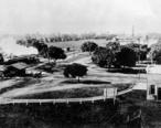 University_Avenue_at_the_Circle_with_train_steaming_toward_El_Palo_Alto__1894.jpg