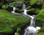 Las_Trampas_Waterfall.jpg