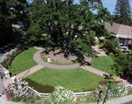 Aerial_view_of_Andrew_Young_park.JPG