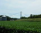 Grand_Tower_Pipeline_Bridge__view_from_Illinois_highway_166.JPG