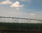 Irrigation_IMG_0423.JPG