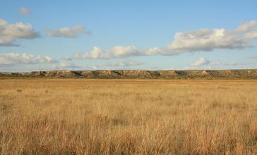 Llano_Estacado_Caprock_Escarpment_south_of_Ralls_TX_2009.jpg