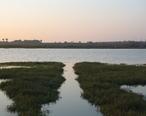 Bolsa_Chica_Wetland_Reserves.jpg