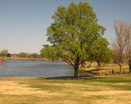 Amarillo_pond_IMG_0153.JPG