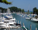 Yachts_Park_in_Chicago_River_-_panoramio.jpg