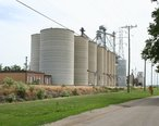 Niantic_Illinois_grain_elevators.jpg