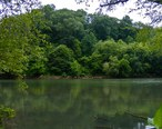 Chattahoochee_River_National_Recreation.jpg