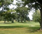 Golf_Bloom.jpg