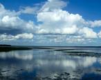 Gville_Newnans_Lake02.jpg