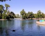 Gibson_park_duck_pond_3.JPG