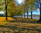 Harris_Riverfront_in_the_Fall.jpg