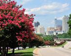 Raleigh_skyline_along_S_Saunders_st.jpg