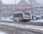 CAT_BUS_Snowy_Day.jpeg