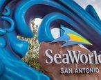 SeaWorld_San_Antonio_2019_v2.jpg