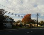 Houses_in_Springfield__Virginia__north_end.jpg