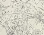 MapNewtown1852LargeDetail-NYPLfromRiker.jpg