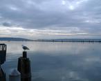 Port_Gardner_Wharf.jpg
